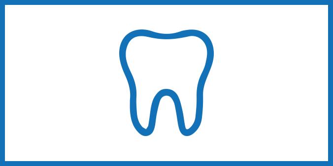 bilde av rotfylling tannlege fornebu